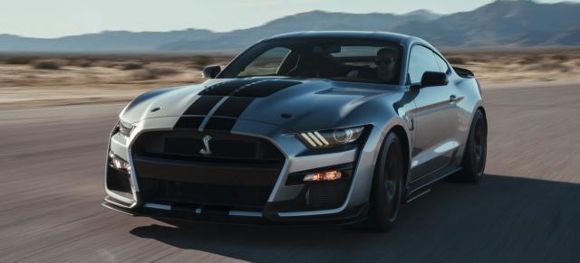so muss ein muscle car aussehen!: wer bietet mehr? der neue shelby